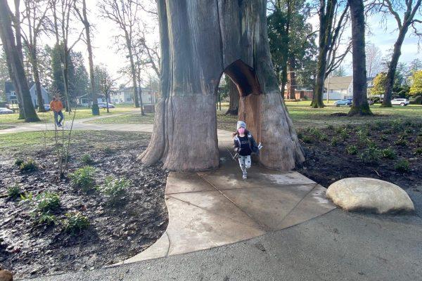 Walk through tree on path Anna & Abby's Yard